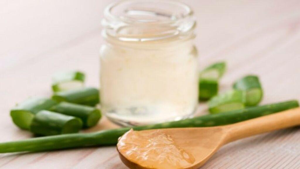 Así podrás preparar una crema de Aloe Vera en casa con solo tres ingredientes: la forma más fácil y efectiva.