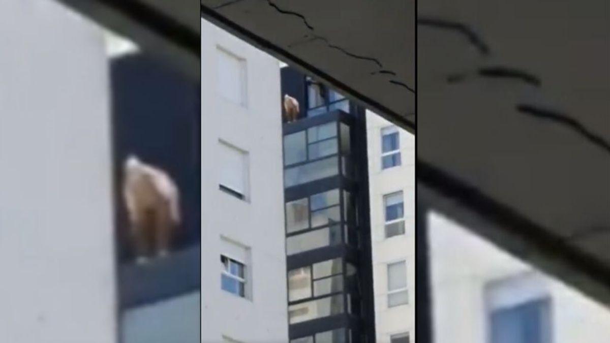 Un héroe anónimo rescata 'in extremis' a un anciano a punto de caer al vacío en Vigo