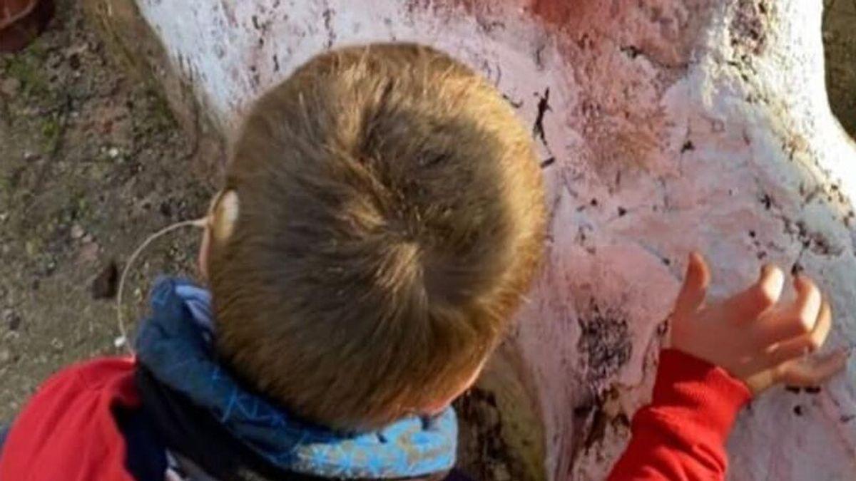 """Piden ayuda para encontrar la antena del implante coclear de su hijo en Sevilla: """"Es del tamaño de una moneda"""""""