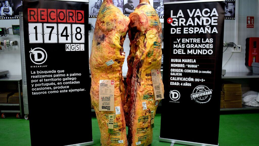 La vaca más grande de España, lista para ser degustada