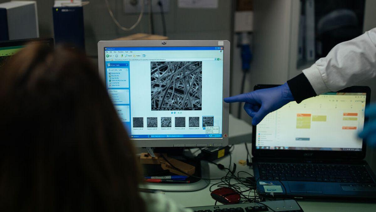 """La variante andina del coronavirus, una nueva cepa que """"merece más atención"""""""