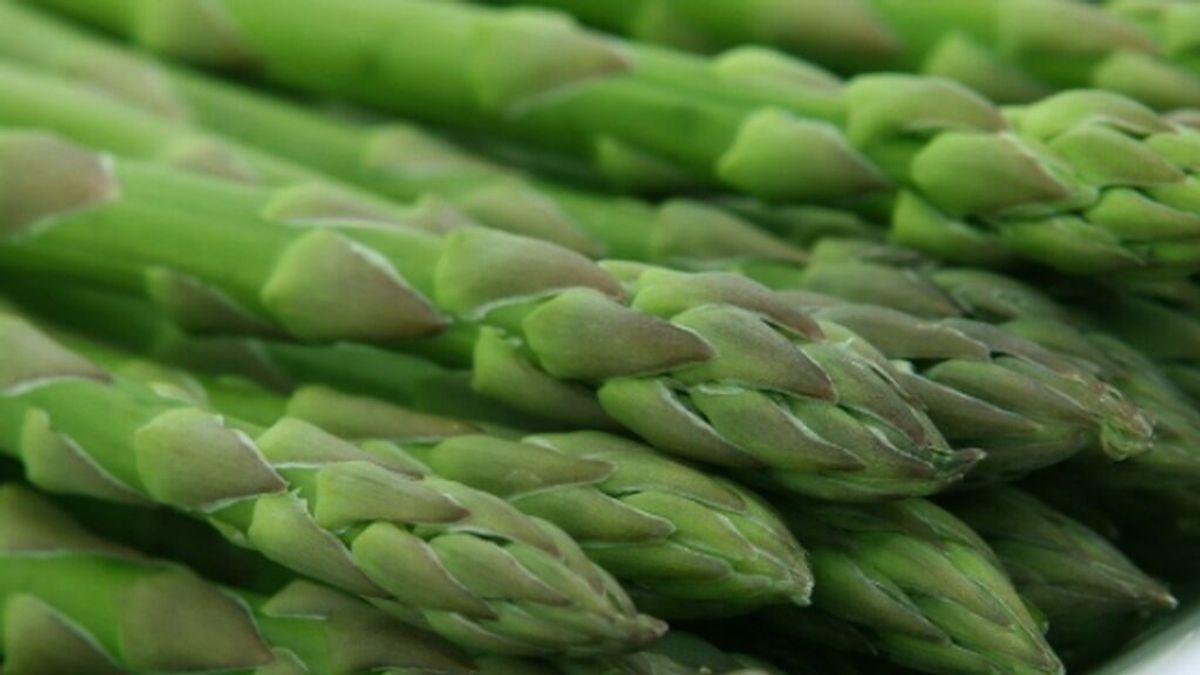 Una receta de elaboración de espárragos se cuela en el BOE belga por error
