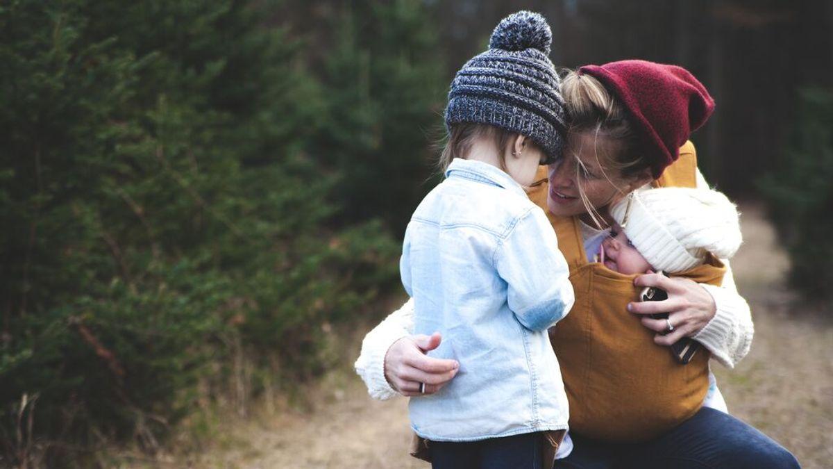 Las familias monoparentales de dos hijos serán consideradas familia numerosa