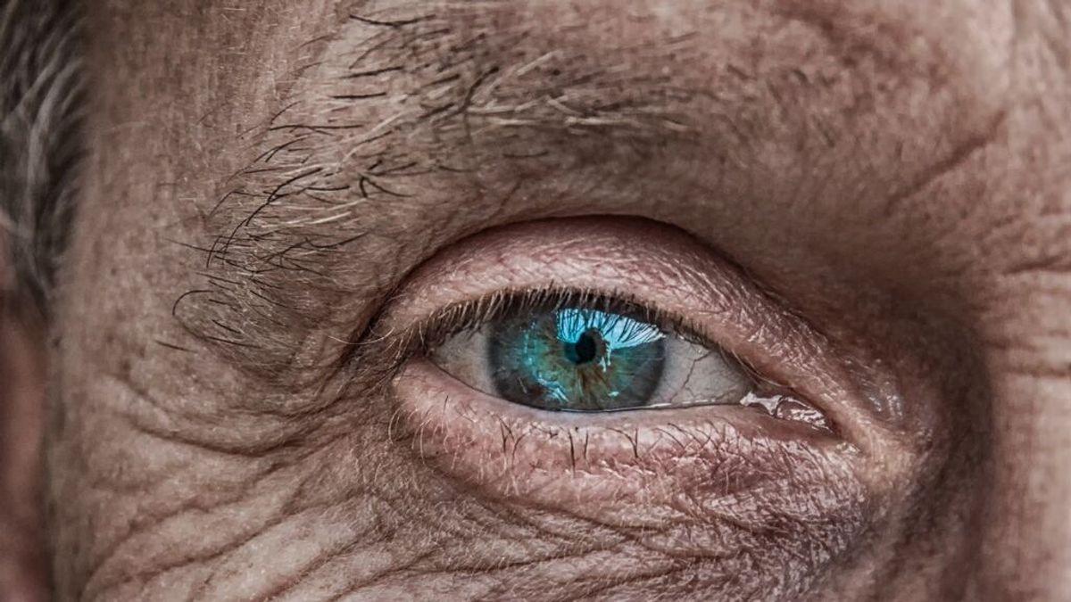 Una investigación americana descubre que el tamaño de la pupila es un indicador de inteligencia
