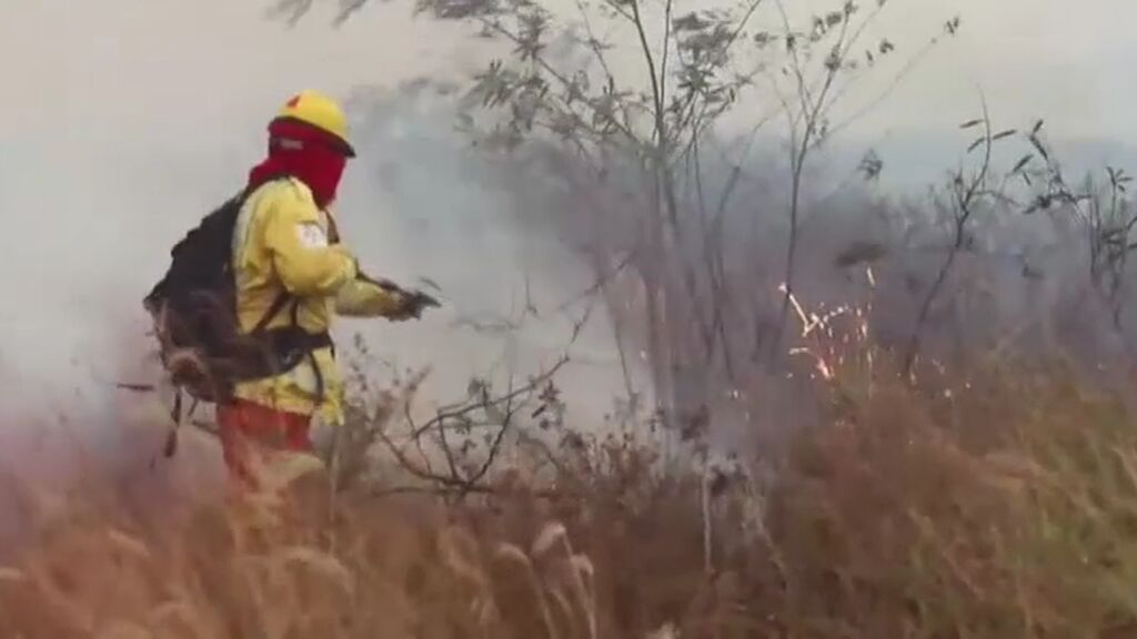 Más de 2.000 hectáreas calcinadas en Bolivia: los humedales del Pantanal, en alerta