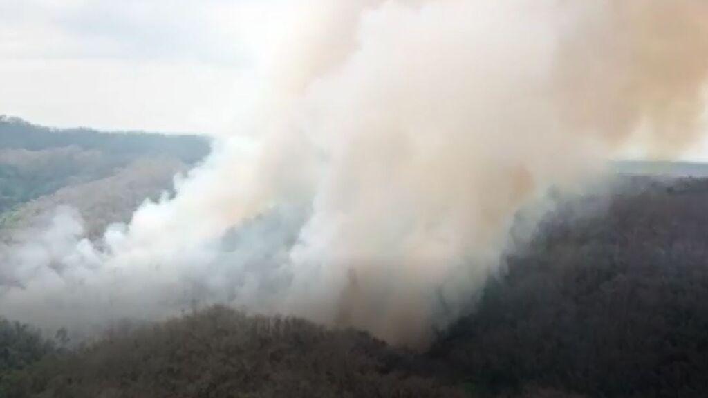 La prevención, clave para luchar contra los incendios forestales