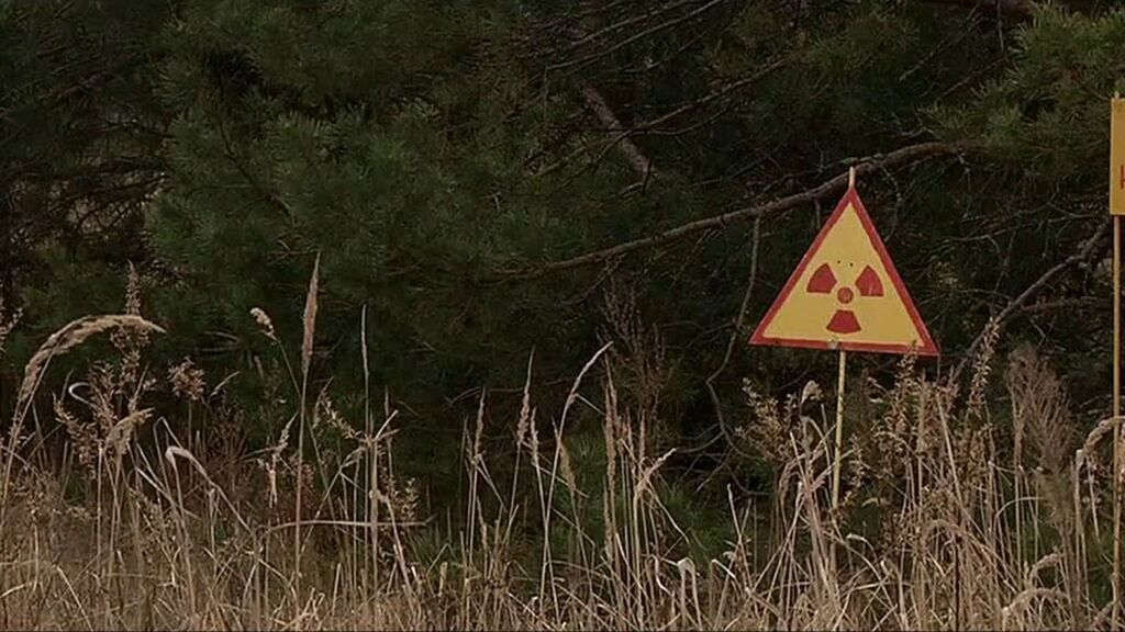 La naturaleza se abre paso en Chernóbil: hallazgos de especies que inquietan a la ciencia