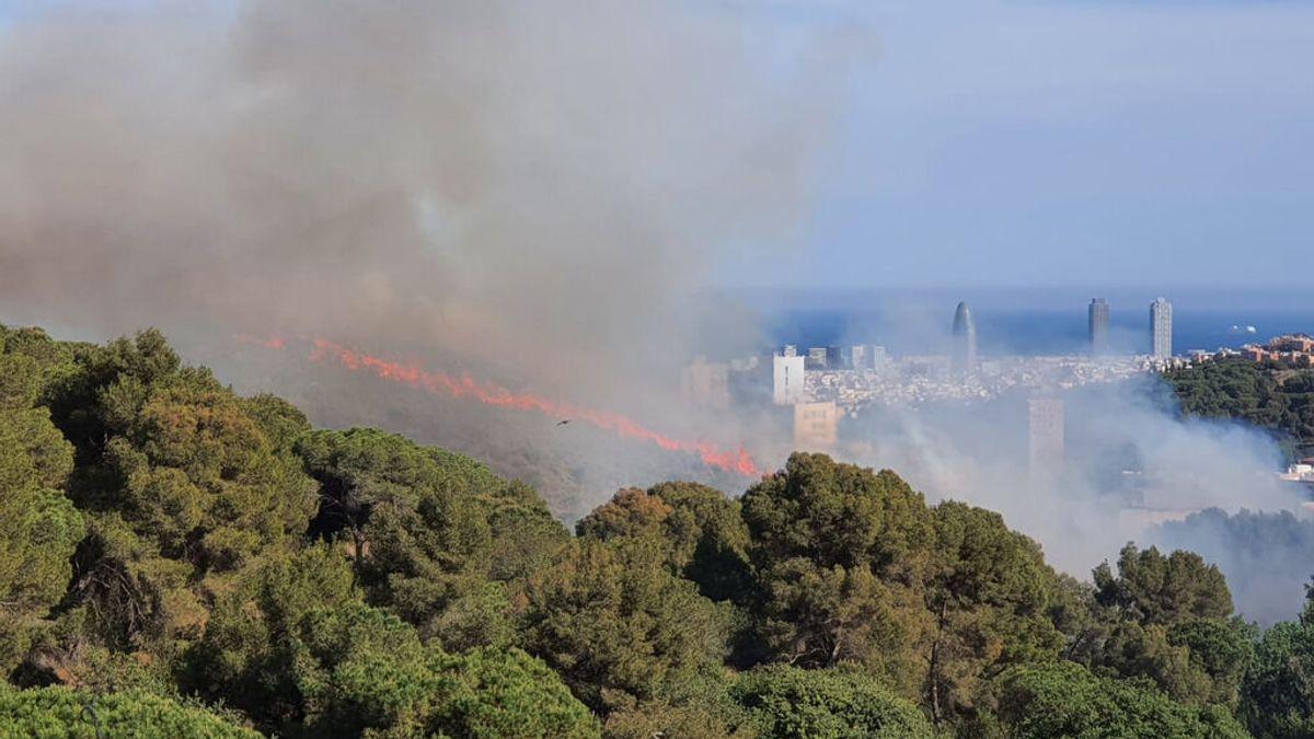 Incendio en una zona cercana a viviendas del Parque de Collserola (Barcelona)