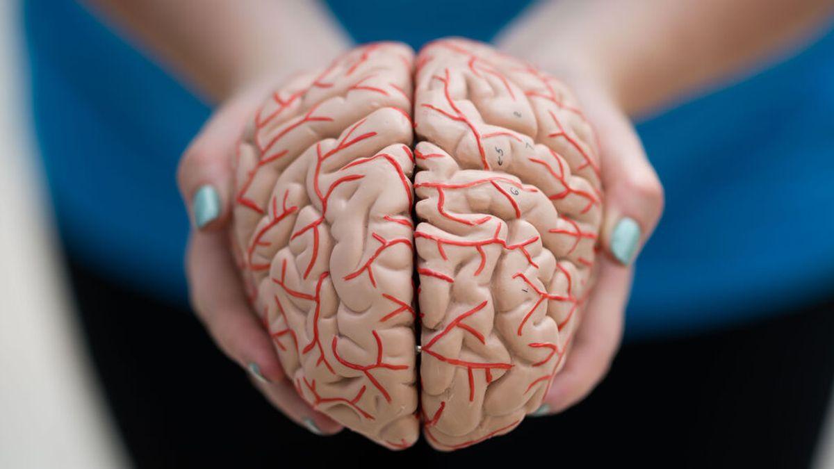 Esperanza, muchas dudas y un precio inasumible: la polémica que rodea al primer fármaco contra el Alzheimer aprobado en dos décadas