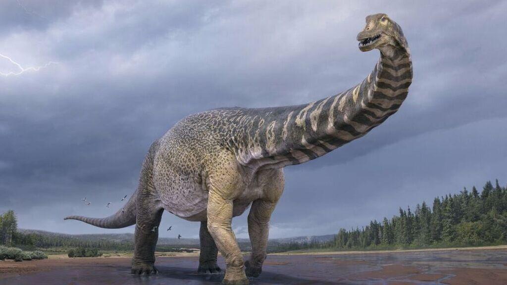 Uno de los dinosaurios más grandes de la historia acaba de ser descubierto en Australia: así es el 'titán del sur'