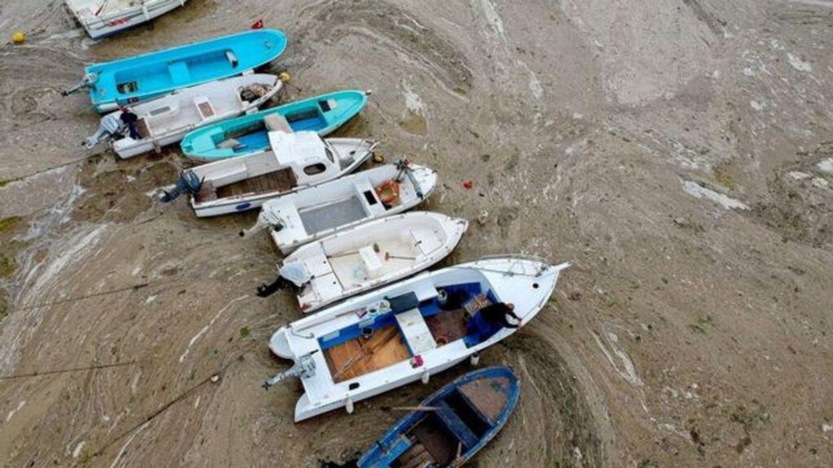 Moco marino: qué es y cómo está afectando a Turquía