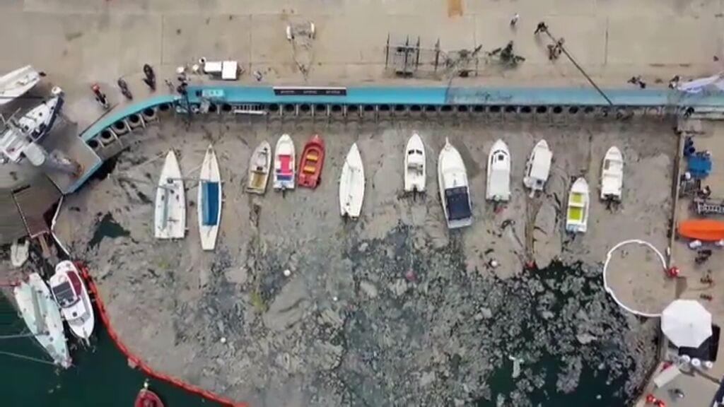 """Una cámara se adentra en el """"moco marino"""" que está devastando el mar de Mármara en Turquía"""