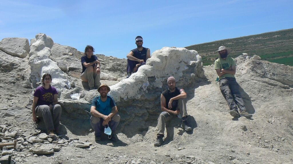 Hallan una columna vertebral de más de cinco metros de un dinosaurio gigante en Teruel