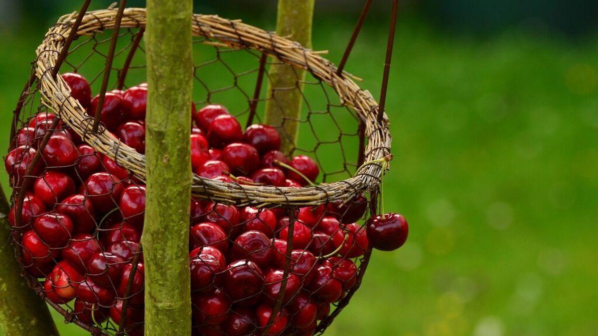 5 maneras de deshuesar cerezas para comer o cocinar