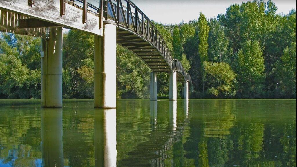 Buscan a un menor desaparecido en Lleida: saltó al río Segre para bañarse y no salió a la superficie
