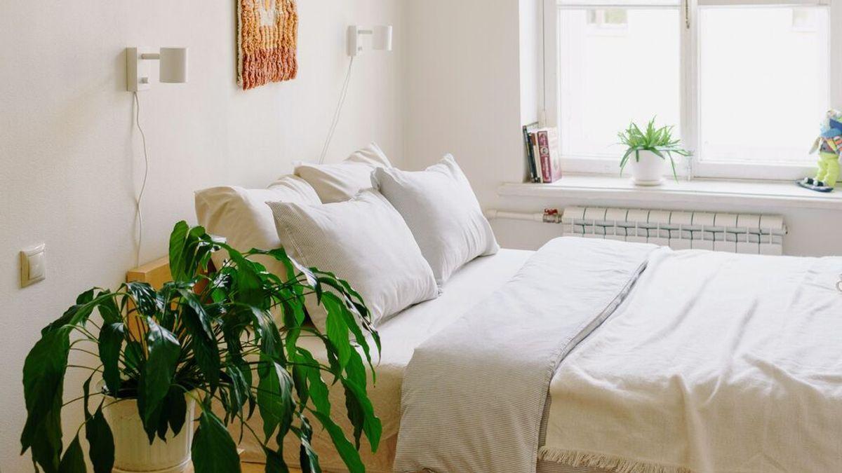 Cada cuánto tiempo se deben lavar las sábanas