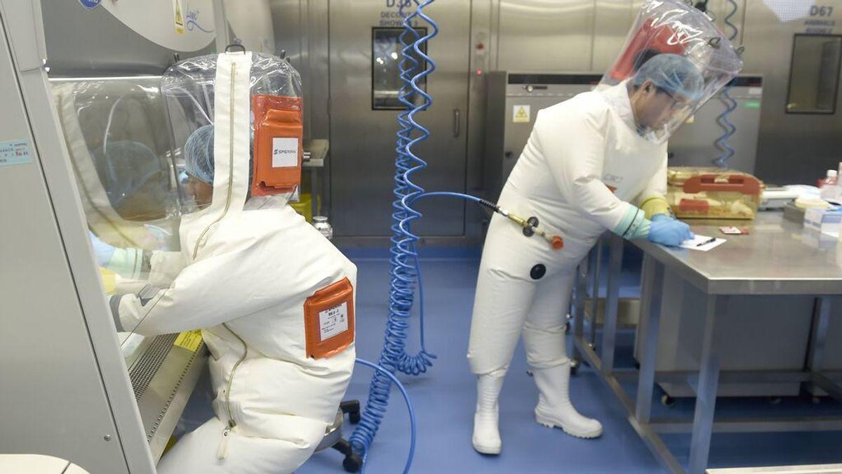 """El enfado de la científica estrella de Wuhan y el riesgo de alterar virus en laboratorio: """"No tengo nada que temer"""""""