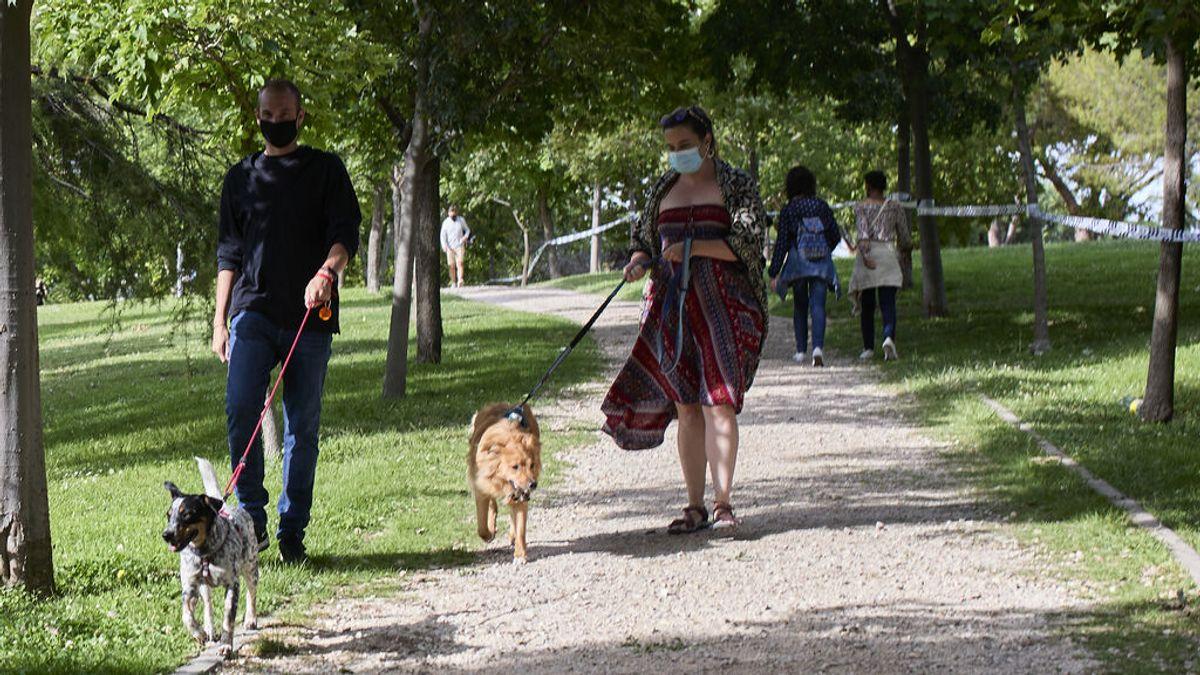 Los médicos andaluces piden seguir llevando la mascarilla en lugares al aire libre