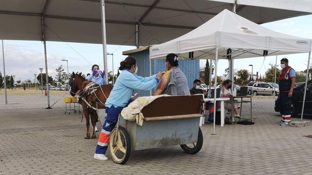 En un carro tirado por una mula: la peculiar forma de vacunarse en Lepe