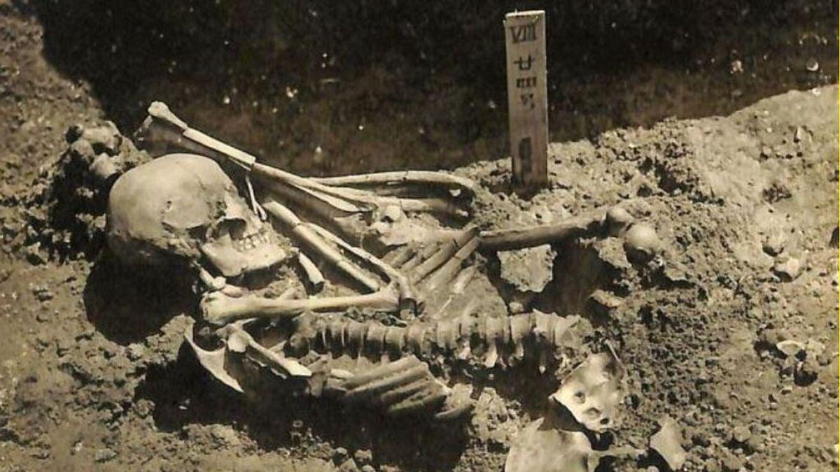 La víctima más antigua de un tiburón: un pescador japonés de hace 3.000 años