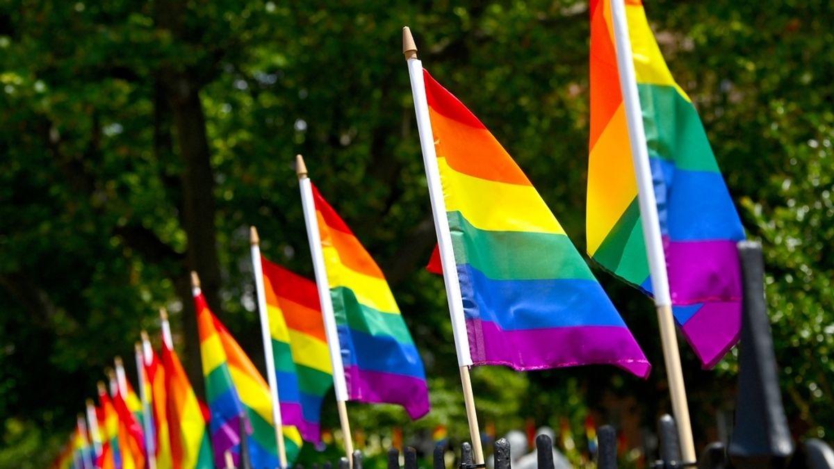 Los enfermeros reivindican su función educadora para prevenir casos de discriminación por orientación sexual