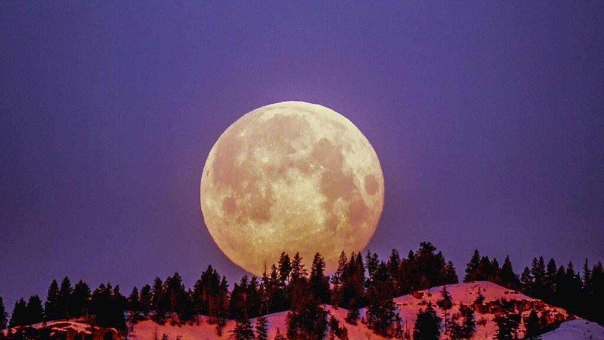 Parto durante luna llena: ¿qué dice la ciencia?