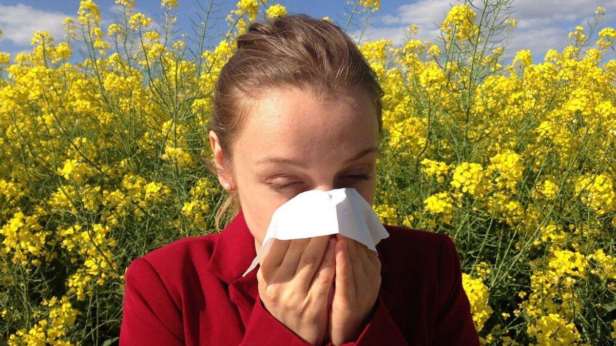 Día Mundial de la Alergia: ¿Qué la provoca y cómo puedo evitar sus síntomas?