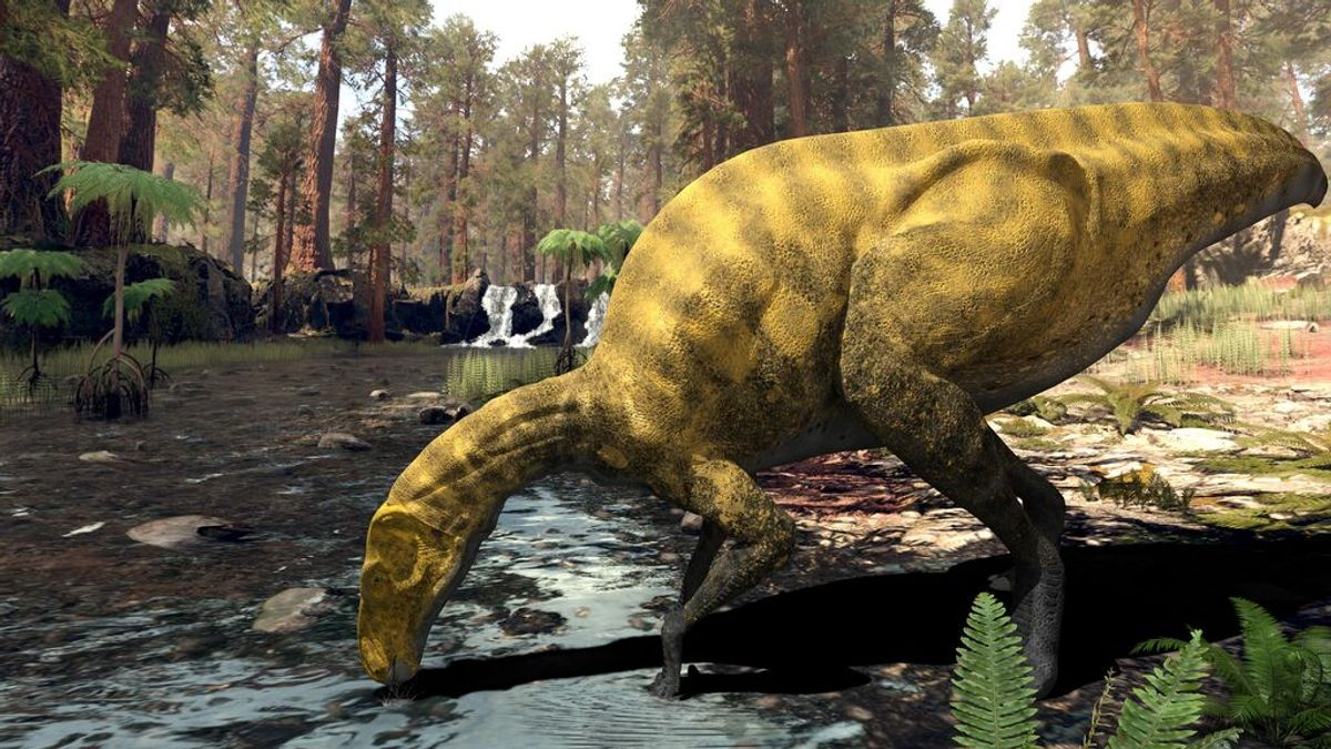 Descubren una especie desconocida de dinosaurio del tamaño de un autobús en Castellón