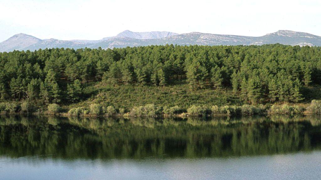 Puentes Viejas está rodeada de un bosque natural.