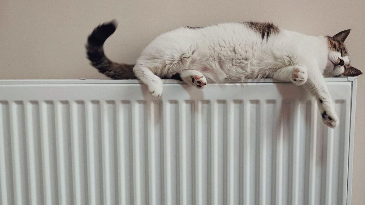 Revisión de la caldera: Quién es el responsable, el casero o el arrendatario
