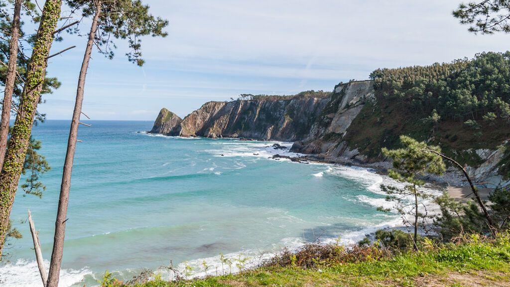 Playa de Oleiros: un bosque de pinos con vistas al mar