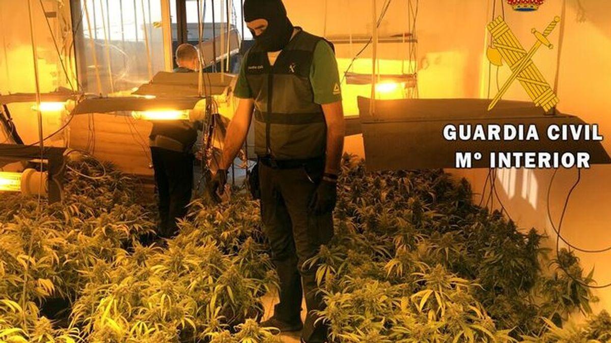 Guardia-Civil-interviene-Roquetas-Mar_1576052581_138844597_667x375