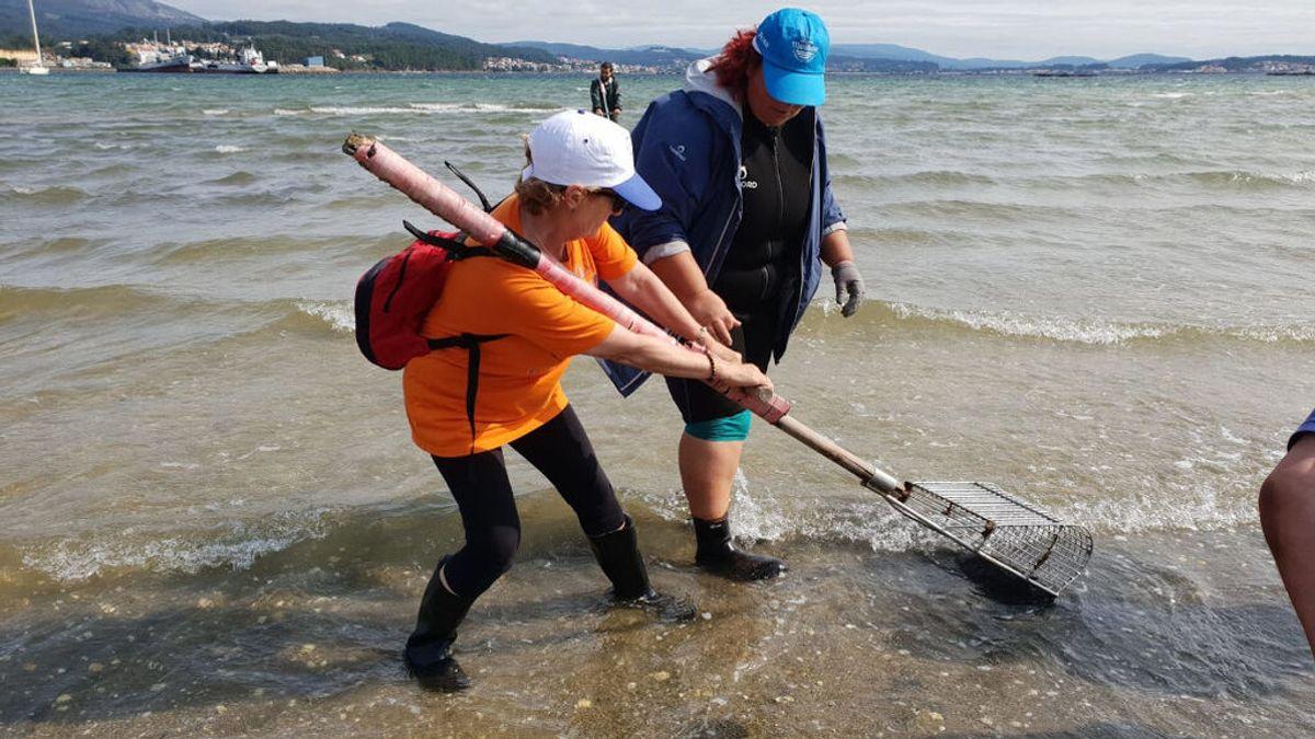 Turistas pagan 12 euros por trabajar un día con las mariscadoras de A Pobra do Caramiñal