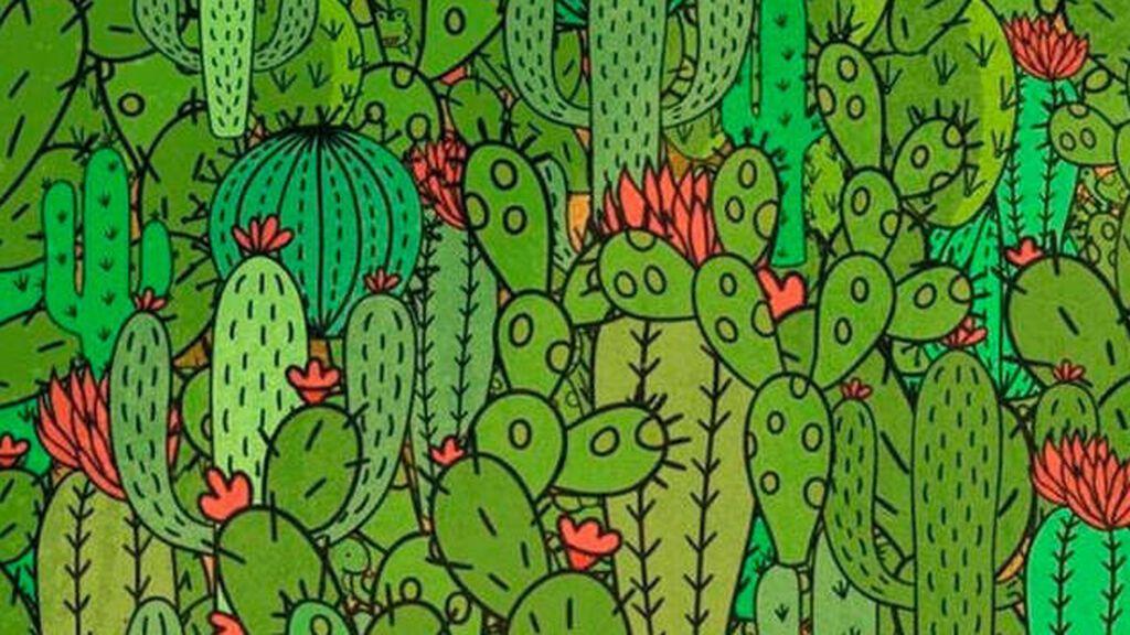 Ponte a prueba y encuentra los animales escondidos en este dibujo.