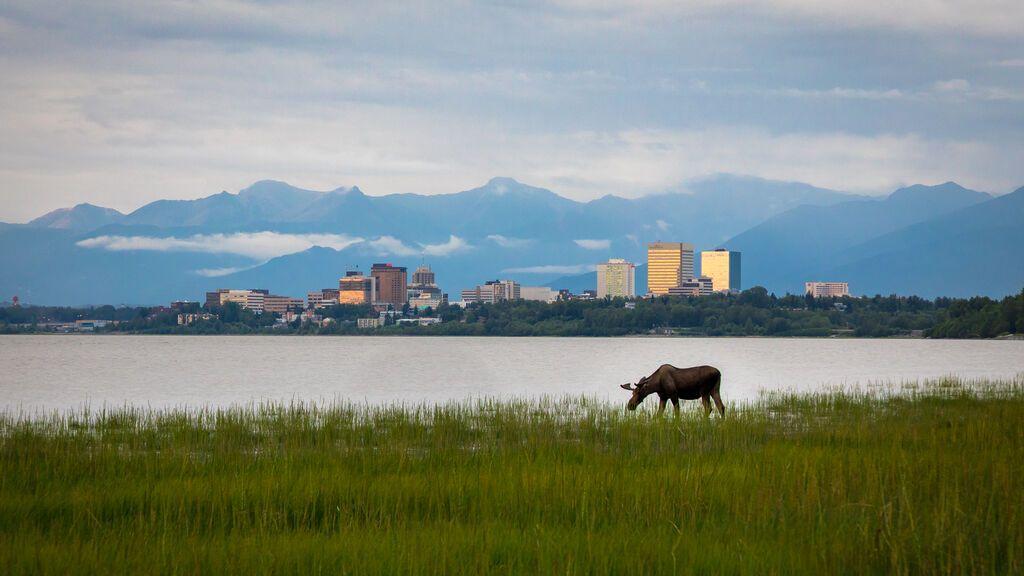 El Triángulo de Alaska: 16.000 personas han desaparecido misteriosamente en tres décadas en este lugar