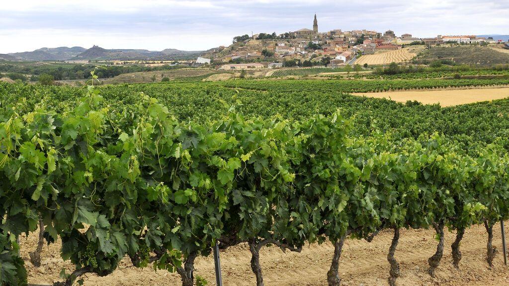 Briones, en La Rioja, es considerado uno de los pueblos más bonitos de España.