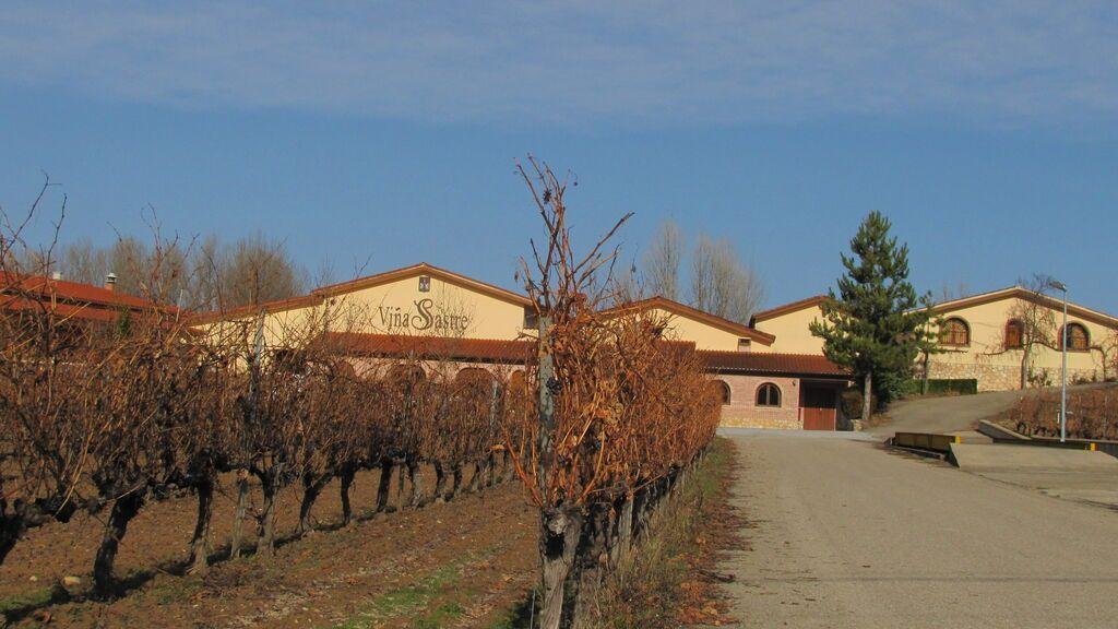Viñedos de Villa Sastre, en Burgos.