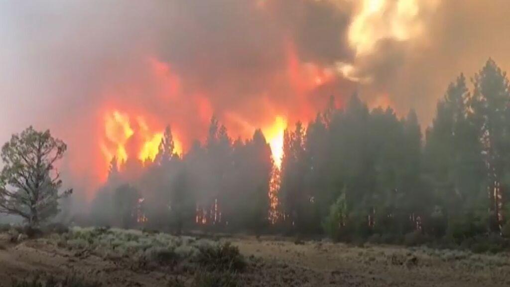 El incendio en la costa oeste de EEUU lleva ya más de 20.000 hectáreas calcinadas