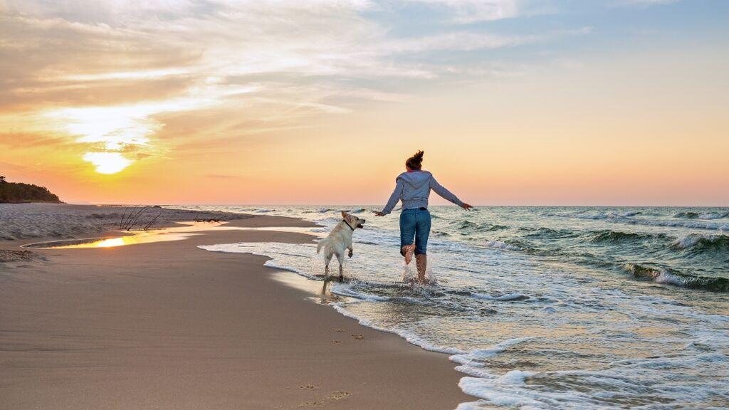 playas petfriendly