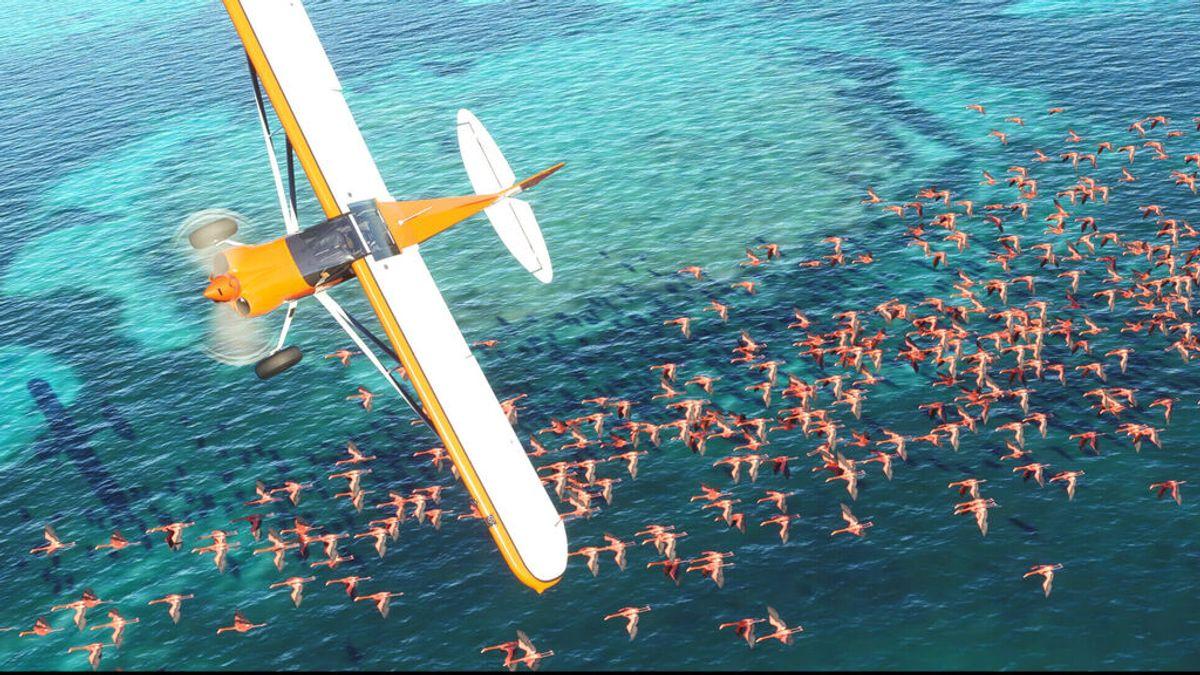 Análisis de Microsoft Flight Simulator para Xbox Series X/S