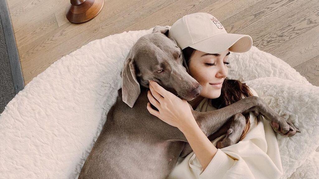 Hande Erçel abre una cuenta de Instagram a uno de sus perros