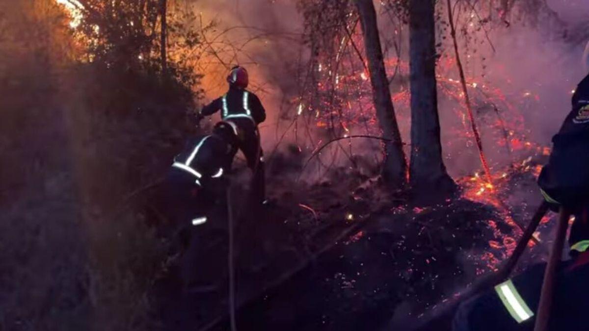 Estabilizado el incendio forestal del Pantano de San Juan, en Madrid
