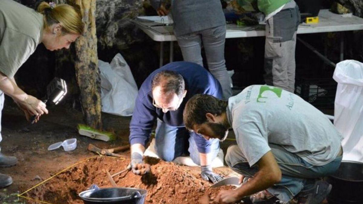 El equipo de investigadores de la UCA lleva a cabo tgrabajo de campo en la cueva de Ardales (Málaga) - UNIVERSIDAD DE CÁDIZ