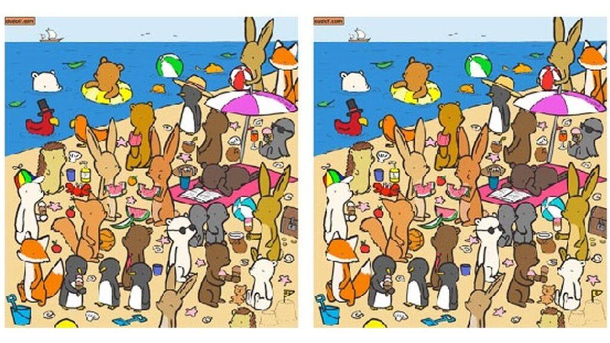 El reto viral más veraniego está en esta playa ¿Puedes encontrar las 7 diferencias?