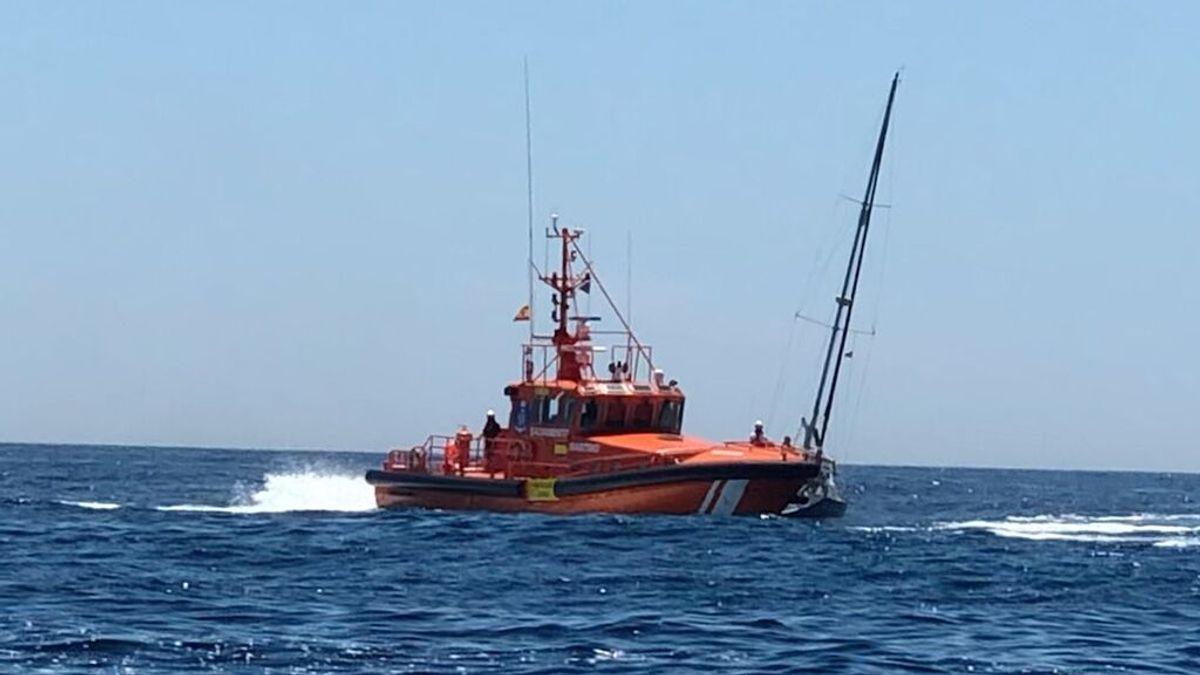 """""""Que alguien haga algo"""": la petición de un navegante inglés tras un nuevo ataque de orcas en el Estrecho"""