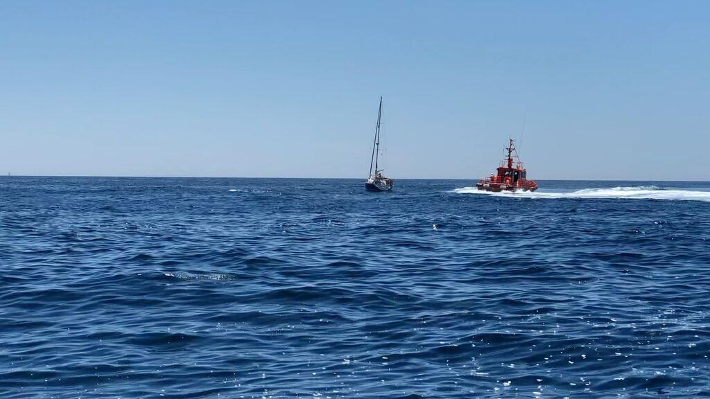 Los esfuerzos de salvamento para alejar a las orcas