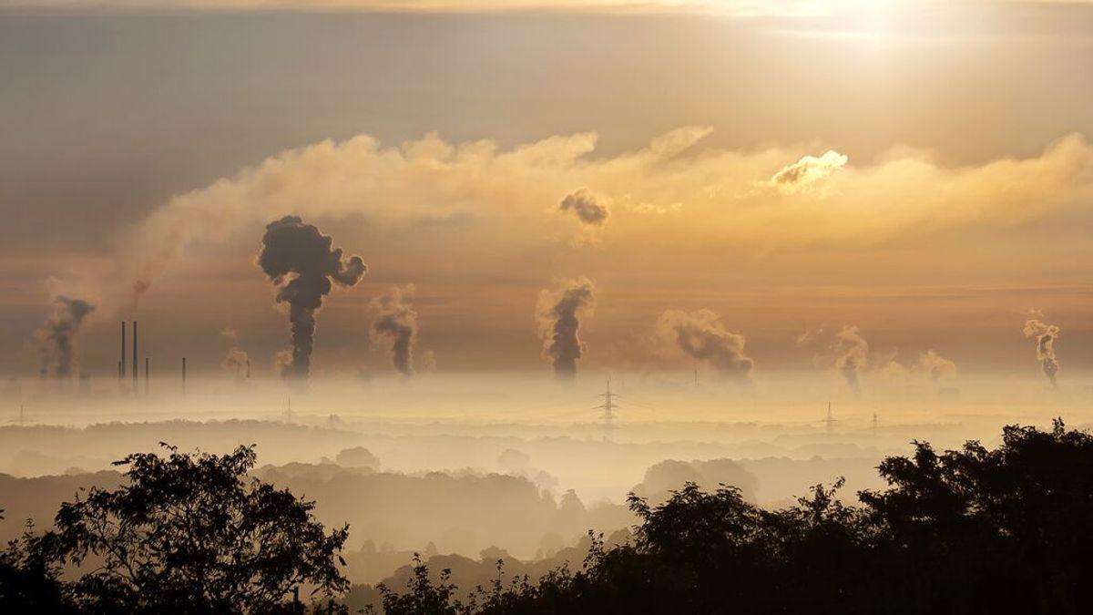 Un estudio propone reducir el consumo de carme y energía en el primer mundo para salvar el planeta