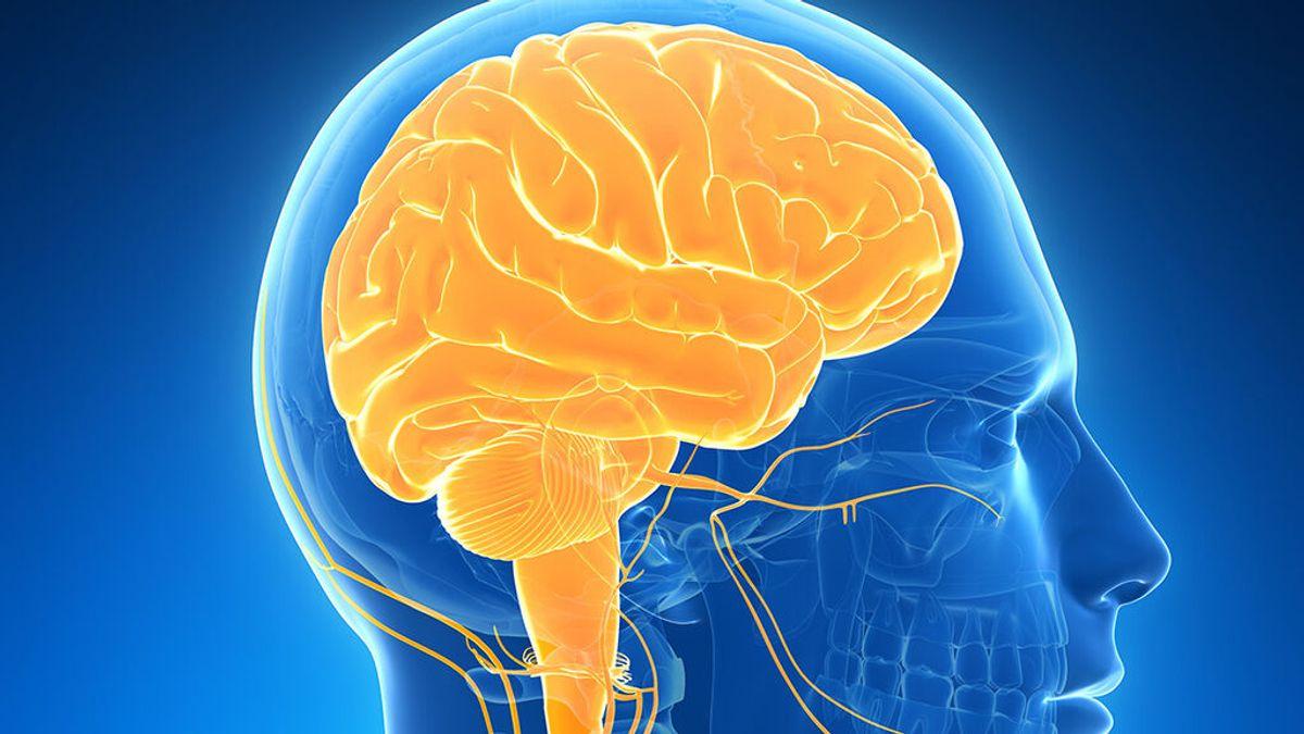 Expertos no hallan signos de lesión cerebral permanentes a largo plazo tras la covid-19