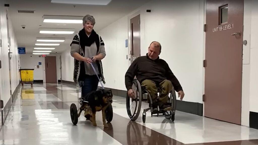 La historia de un perro y un dueño que usan silla de ruedas conmueve a las redes sociales