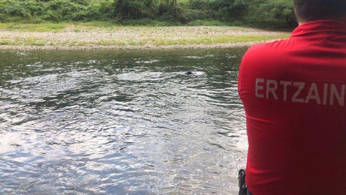 Muere un inmigrante ahogado en el río Bidasoa cuando intentaba cruzar a nado hasta Francia